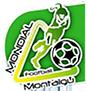 T.I. MONTAIGU,  FRANÇA 2012